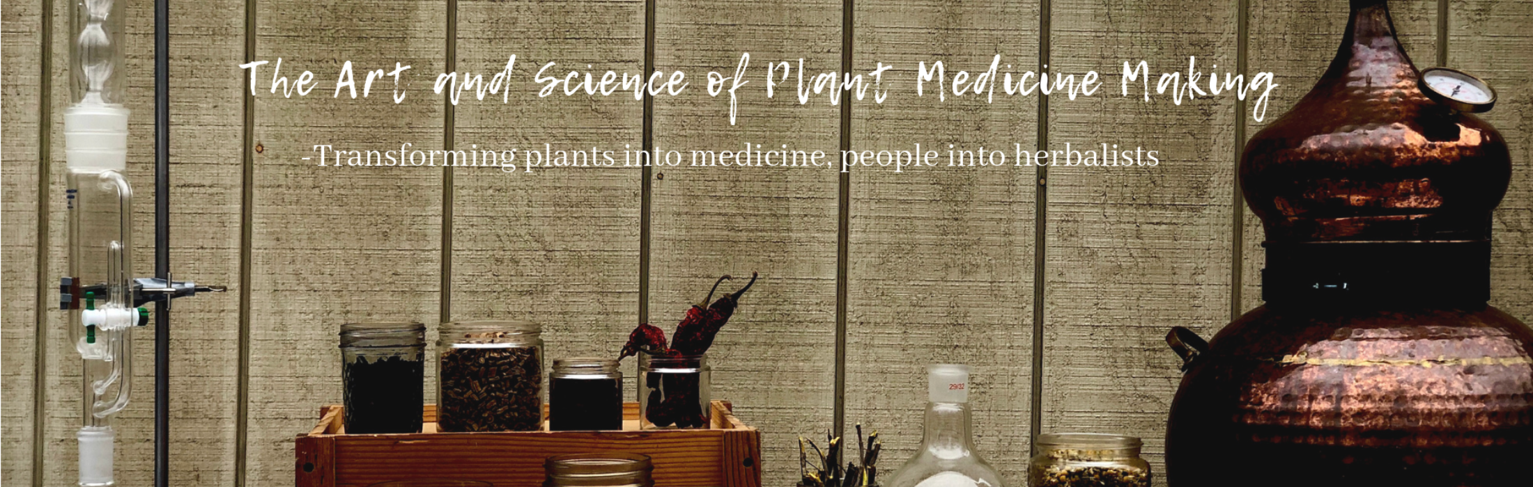 The Art and Science of Plant Medicine Making (4)